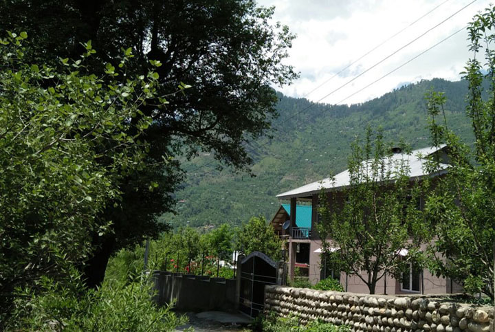 Home Stay Apple Tree - Country Side Four Bedroom Cottage in Manali
