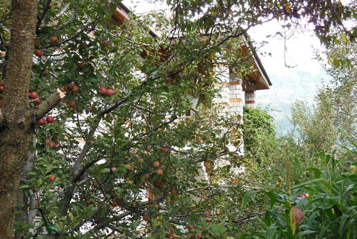 Luxury Cottage No.1 - Two Bedroom Boutique Holiday Cottage in Manali